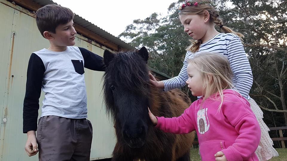 Holiday Camps at Otford Farm